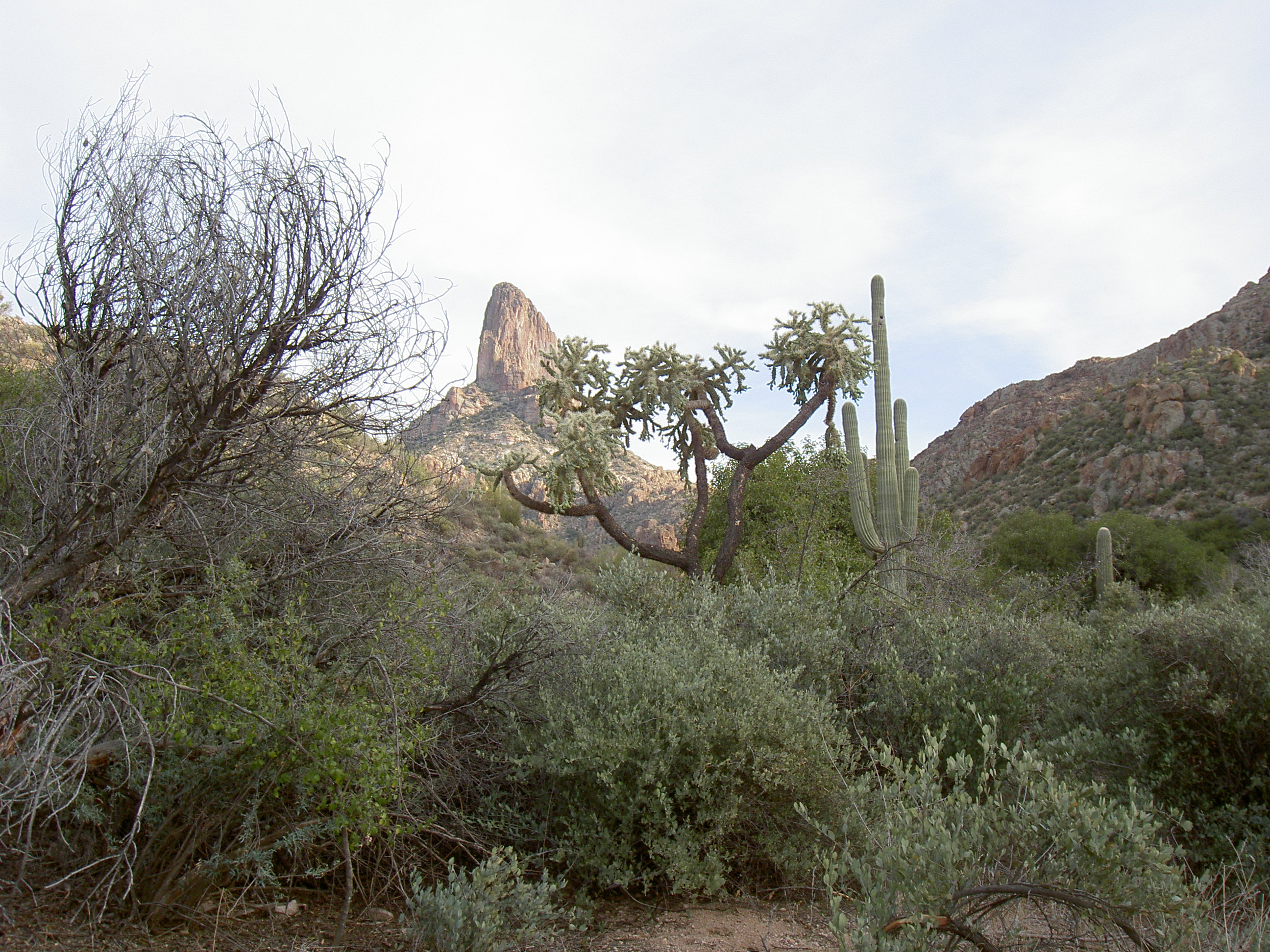 superstition-mountains-013
