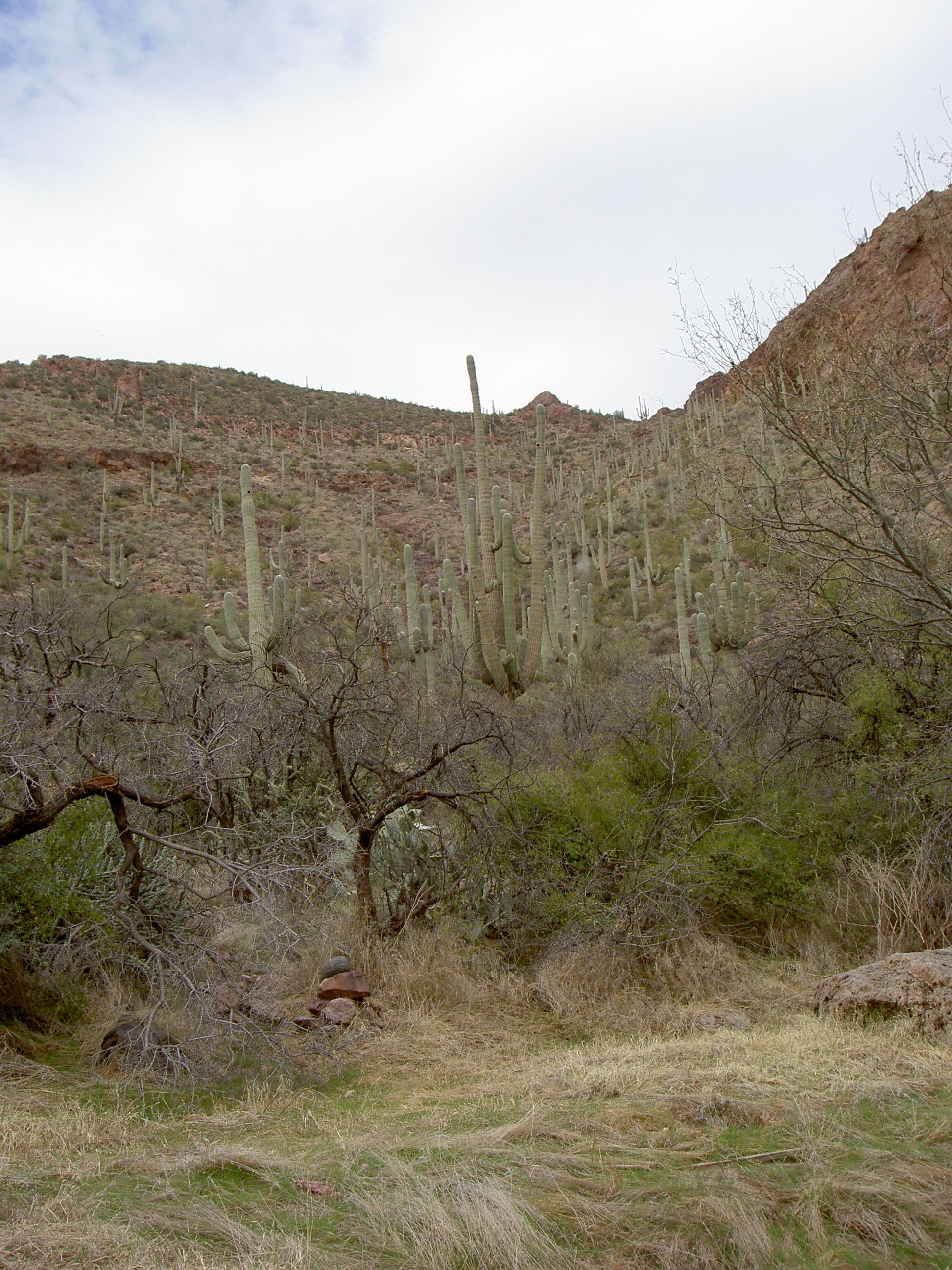 superstition-mountains-056