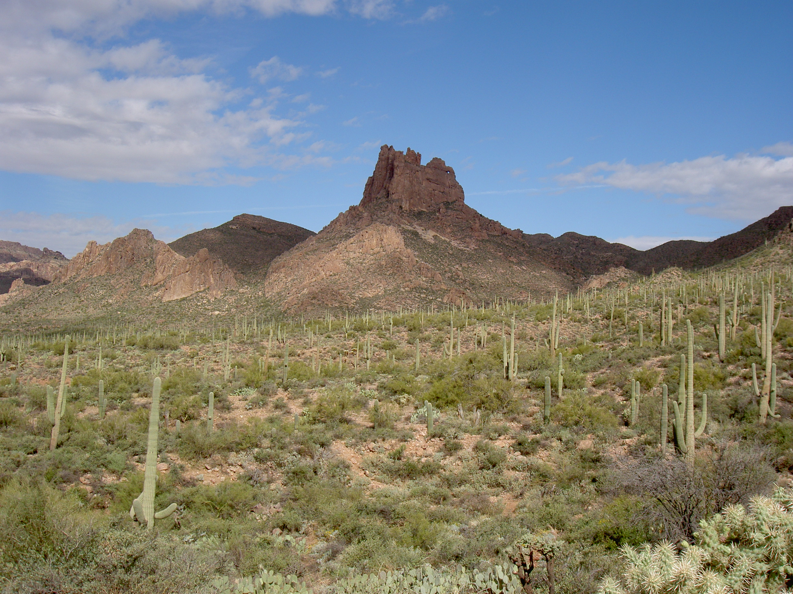 superstition-mountains-073