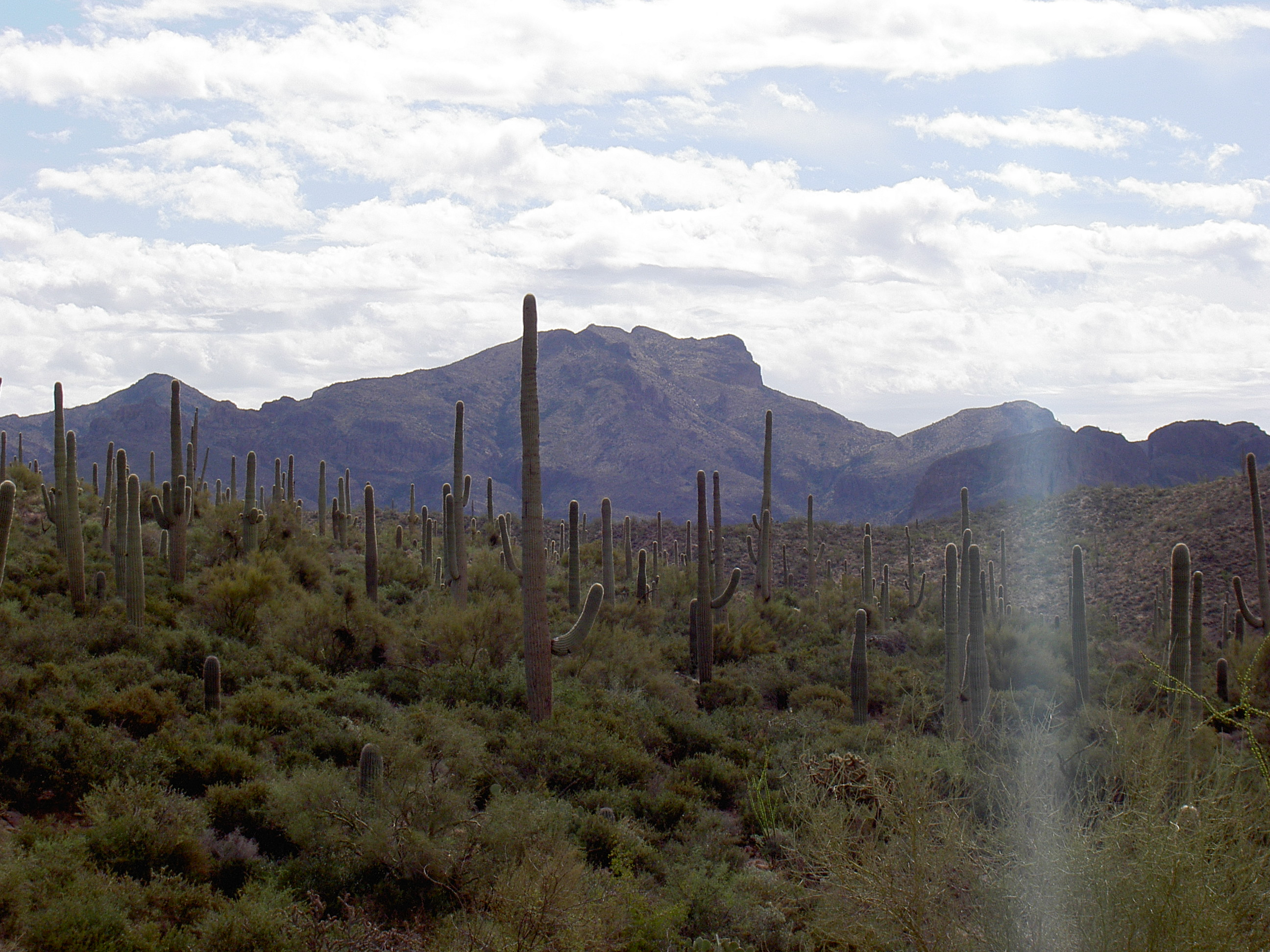 superstition-mountains-075