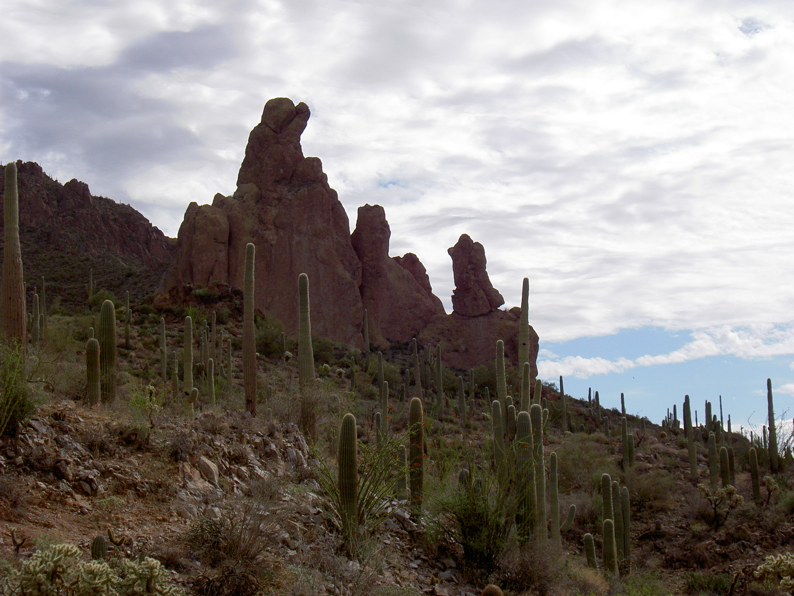 superstition-mountains-078