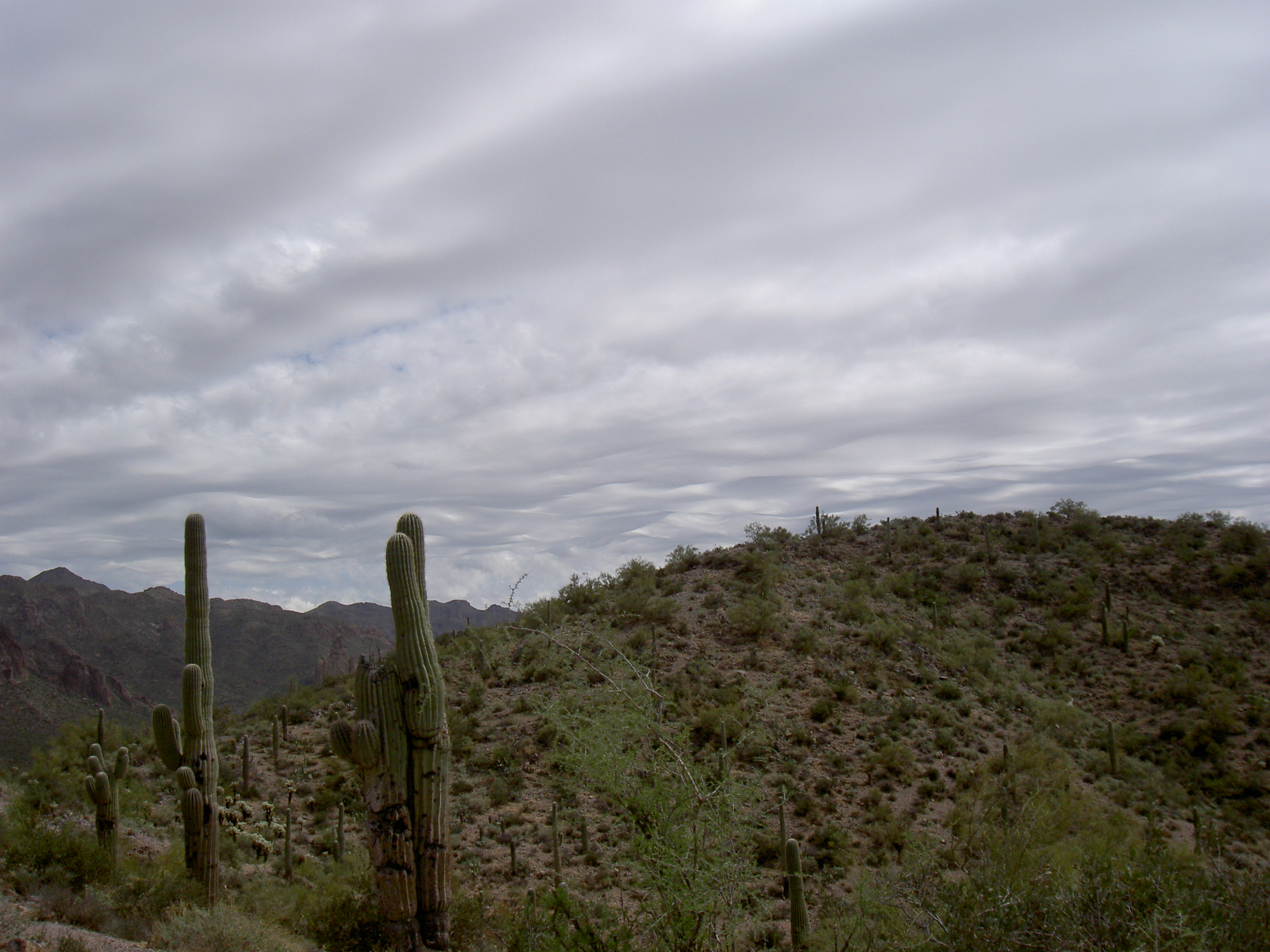 superstition-mountains-082