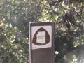 Morman Grove Trail Head