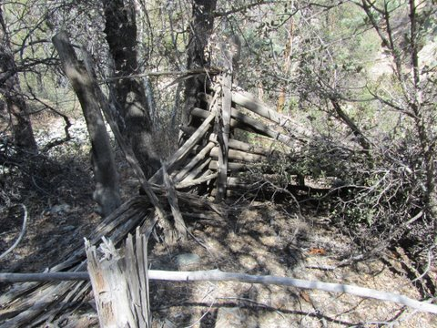 rock-creek-miles-ranch-wildcat-2-17-11-020