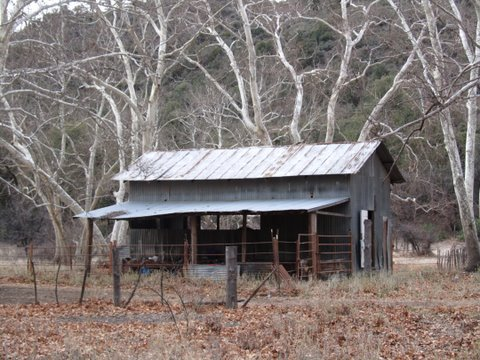 rock-creek-miles-ranch-wildcat-2-17-11-064