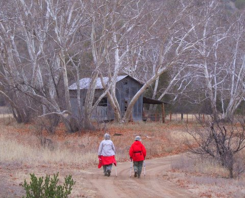 rock-creek-miles-ranch-wildcat-2-17-11-083