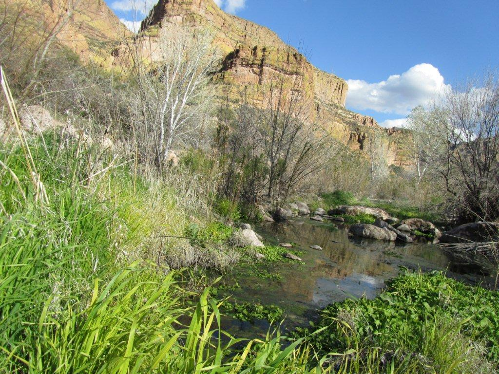 squaw-canyon-superstitions-2-2012-31