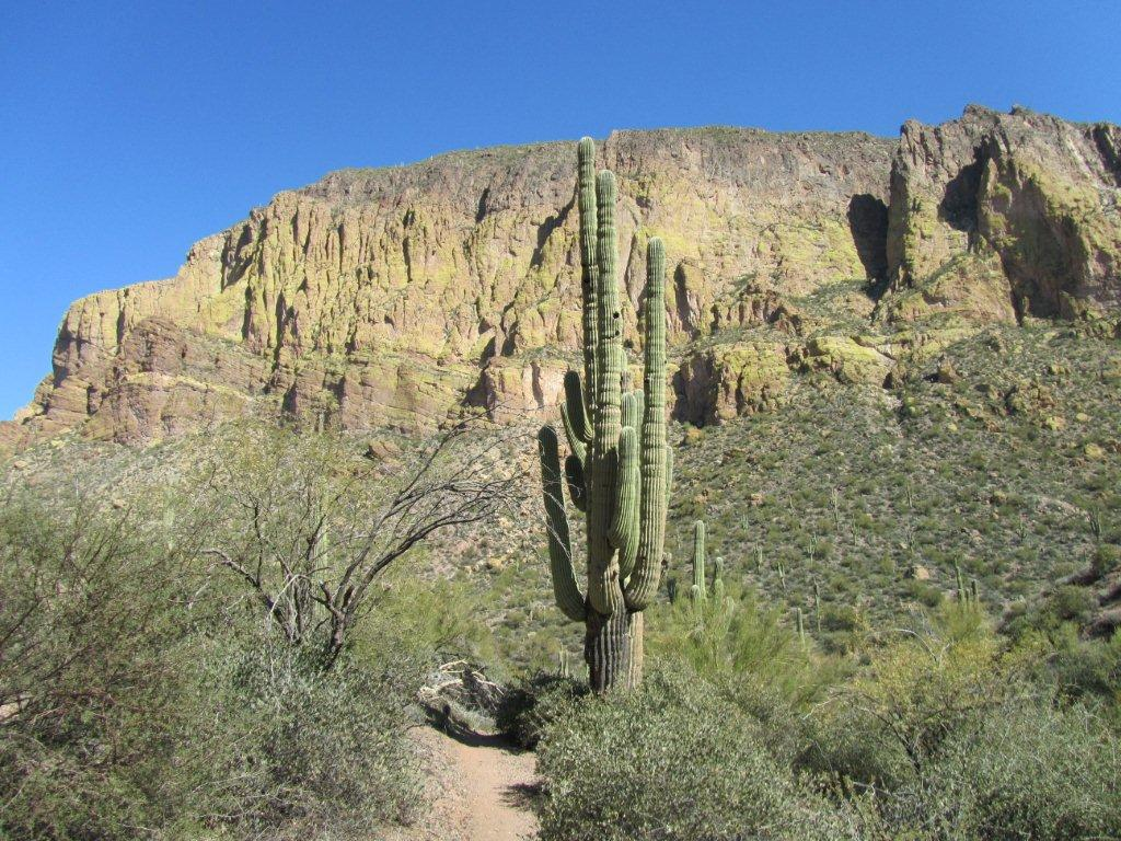 squaw-canyon-superstitions-2-2012-42