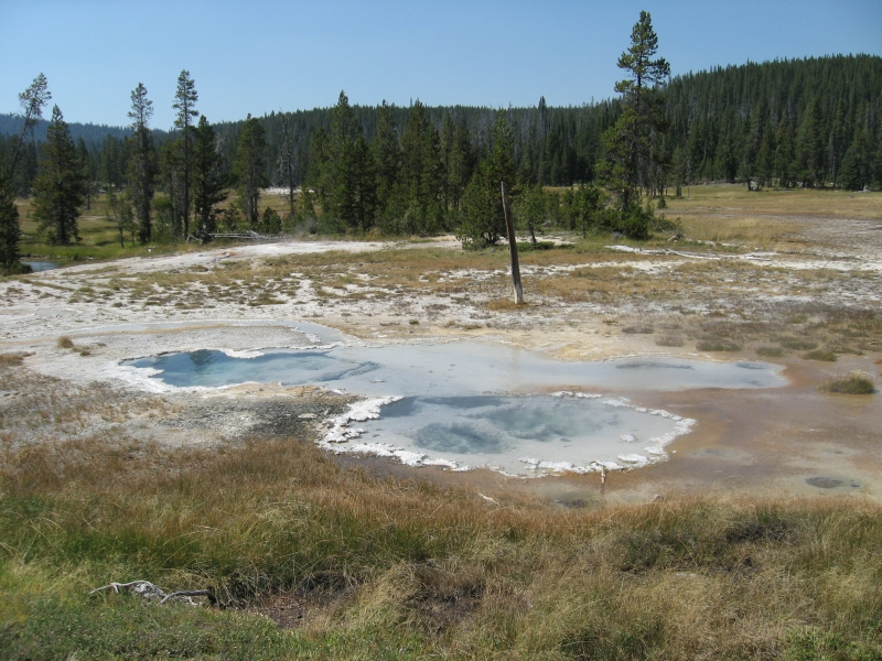 connie-aug-2007-yellowstone-087
