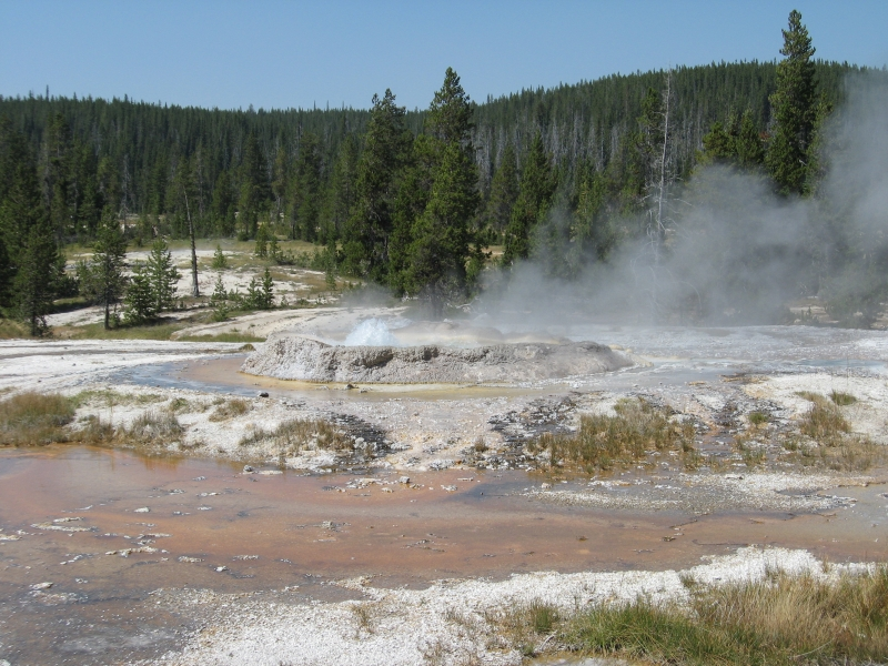 connie-aug-2007-yellowstone-094