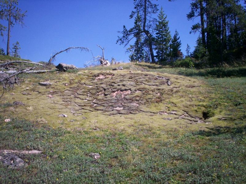june-aug-2007-yellowstone-064