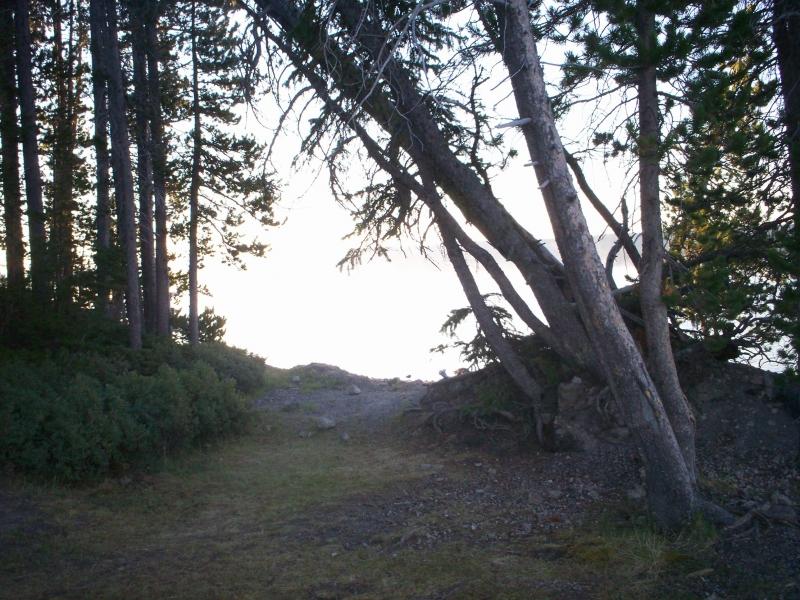 june-aug-2007-yellowstone-072