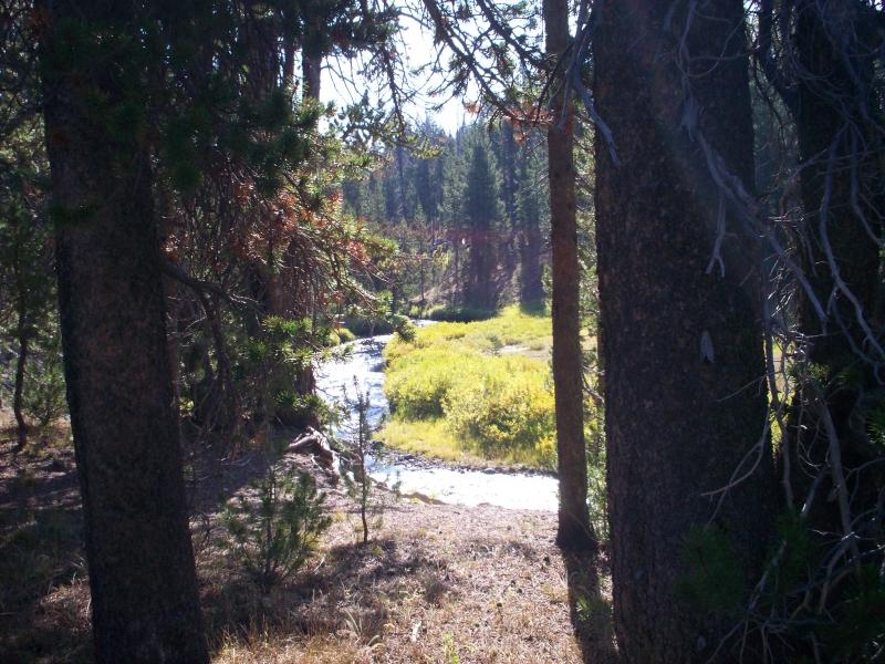 june-aug-2007-yellowstone-114